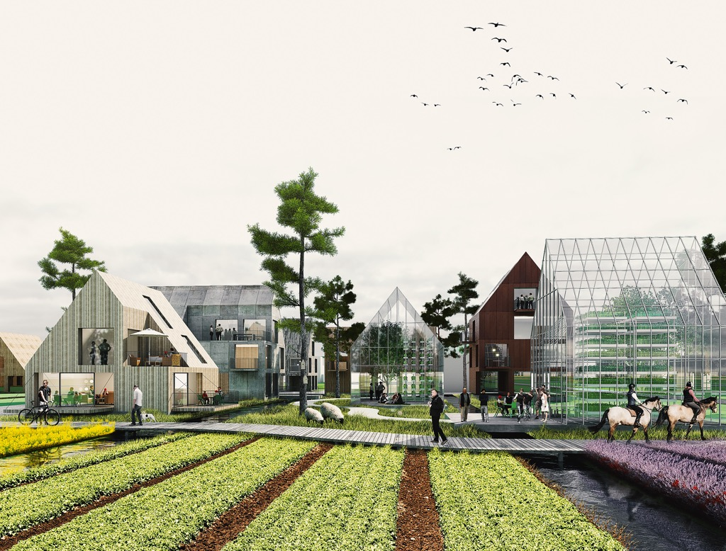 An illustration of grazing sheep, horse riding and food growing in allotments and greenhouses.