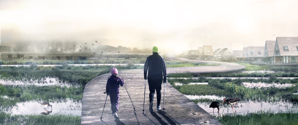 An illustration of an adult and child nordic walking along a manmade pathway through the marshland, surrounded by water birds. The path leads to housing.